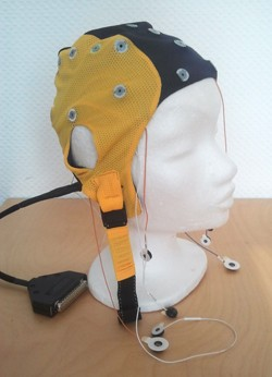 waveguard cap for qeeg assessment